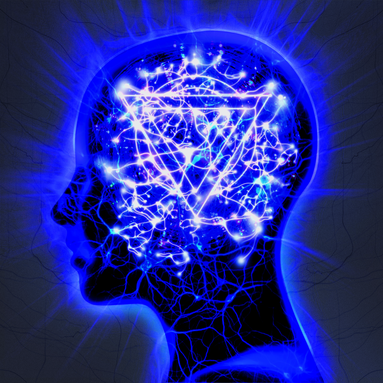 Enter-Shikari-The-Mindsweep-album-sleeve..jpg
